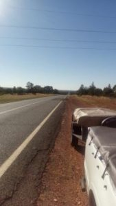 View East, 10kms East of Cobar