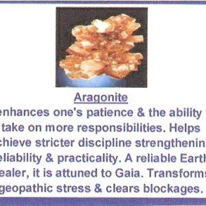 Aragonite sputnik clusters