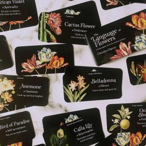 The Language of Flowers Guidance Cards – Cheralyn Darcey