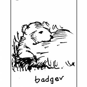 Carrot Cards – K. Meriwether Baxter